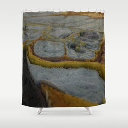 Flaw Shower Curtain