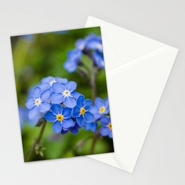 Forget-Me-Nots 1 Stationery Cards