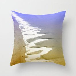 Folly From Above Throw Pillow