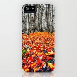 Autumn on the Ground iPhone Case