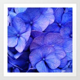 Hydrangea Dark flower pattern Art Print