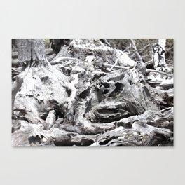 Just Driftwood Canvas Print