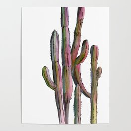 Cactus in green and pink Poster