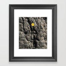 Blackened Earth Framed Art Print