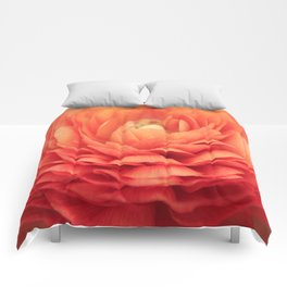 Soft Layers Comforters