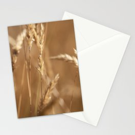 Simple Moments Stationery Cards