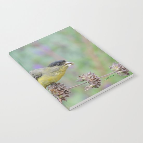 Lesser Goldfinch Snacks on Seeds Notebook