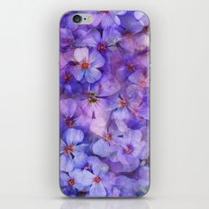 Spring is in the Air 7 iPhone & iPod Skin