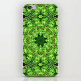 Spring green Canadian Hemlock mandala iPhone Skin