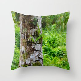 Plants on Trunk Throw Pillow
