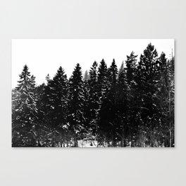Forest Dark IV Canvas Print