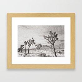 Joshua Tree Park by CREYES Framed Art Print