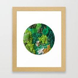 Moss Cluster Framed Art Print