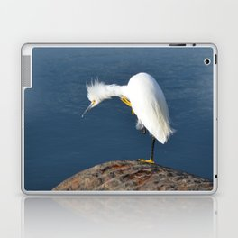 grooming egret Laptop & iPad Skin