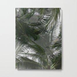 Palm View Metal Print