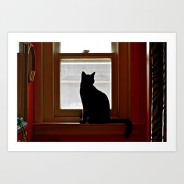 Salem in the window. Art Print