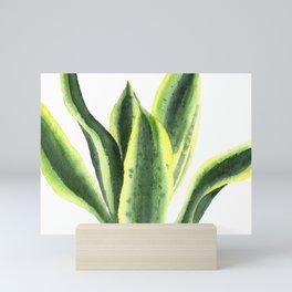 Snake plant watercolor background Mini Art Print