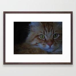 Mel  Framed Art Print