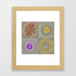 Anticapitalistically Combination Flower  ID:16165-030023-59450 Framed Art Print