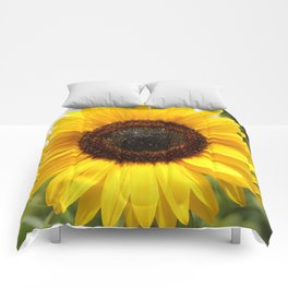 The Sun at Giverny Comforters
