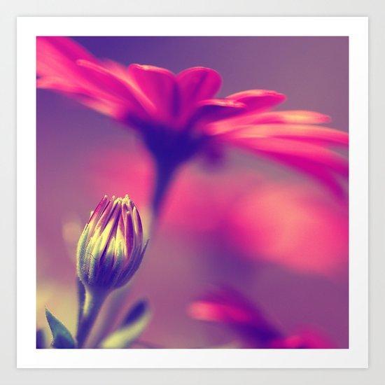 flower bud Art Print