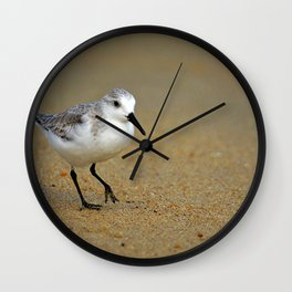 Sanderling Wall Clock