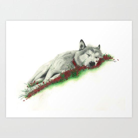 Wolf. Art Print
