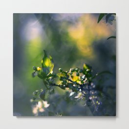 Beneath the Trees Metal Print