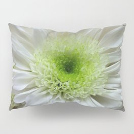 Daisy Reflection Pillow Sham