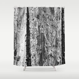 Carvings in Tree Trunk Gnarly Texture Pattern Shower Curtain
