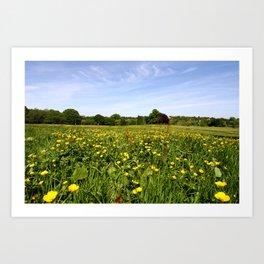 Wildflowers On Hampstead Heath, London, England Art Print