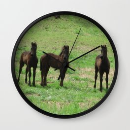Friesian Foals Wall Clock