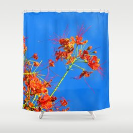Branch and Sky Shower Curtain