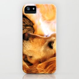Golden Retriever and her baby bunnies iPhone Case