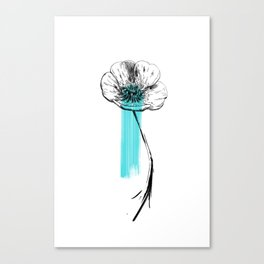 Bouton d'or Canvas Print