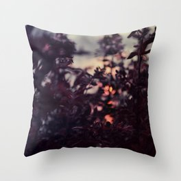 Caught sun Throw Pillow
