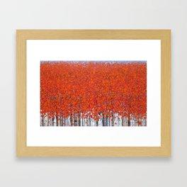 Late autumn 3 Framed Art Print