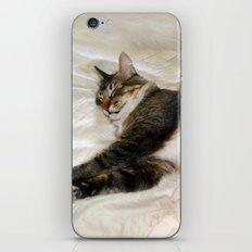 Cat Dreaming iPhone & iPod Skin