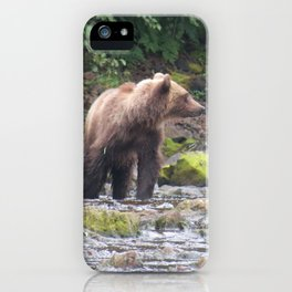 Curious Bear iPhone Case