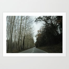 Forest road horizontal Art Print