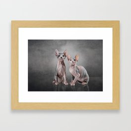Drawing two cats Sphynx, hairless Framed Art Print