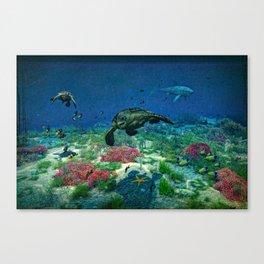 Sea turtles swim through the Mediterranean Sea Canvas Print