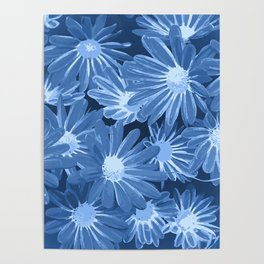 Duotone Flowers Poster