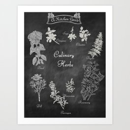 Culinary Herbs for the Kitchen Art Print
