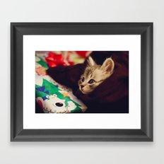 christmas kitten Framed Art Print