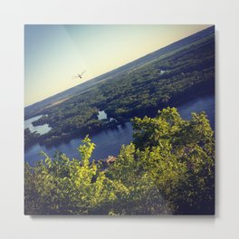 Dragonfly on the Vista Metal Print