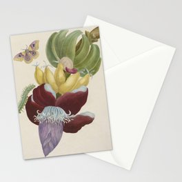 Maria Sibylla Merian Fruits Banana Stationery Cards