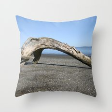 Drift Arch Throw Pillow