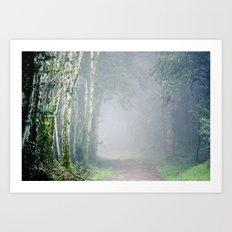 Foggy Trails Art Print