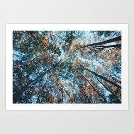 look up 02 Art Print